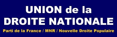 udn,ndp,mnr,pdf,synthèse nationale,identité